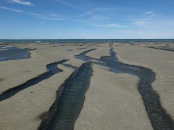 Des rivières cresées dans la roche