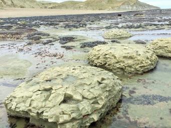 Droles de pierre